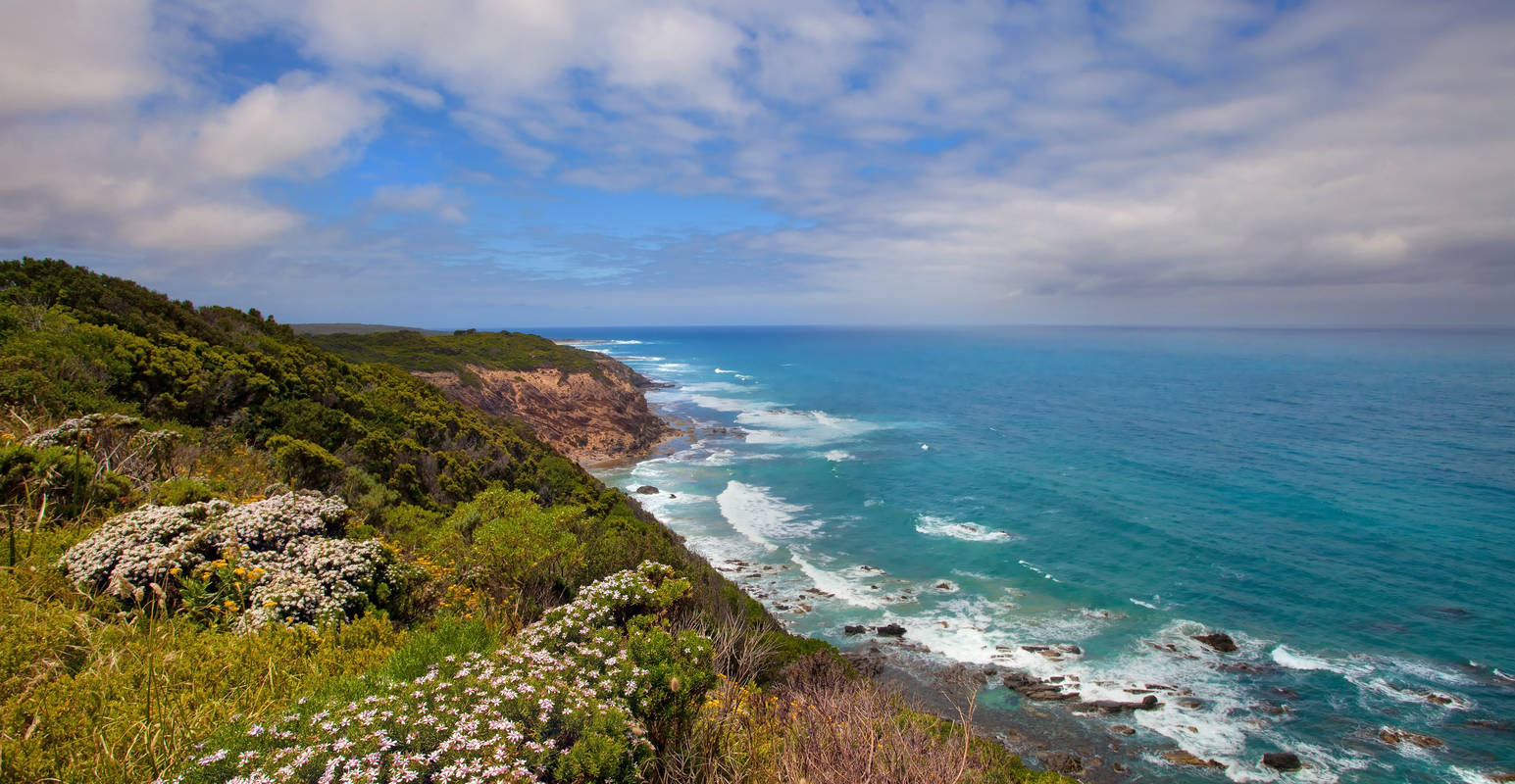 cape otway single guys High quality cape otway inspired t-shirts, posters, mugs and more by independent artists and designers from around the world all orders are custom made and most ship worldwide within 24 hours.